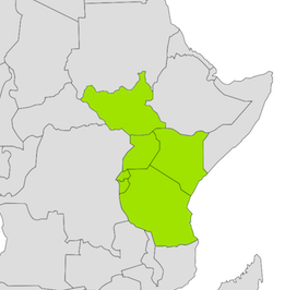 The East African Community - 2017